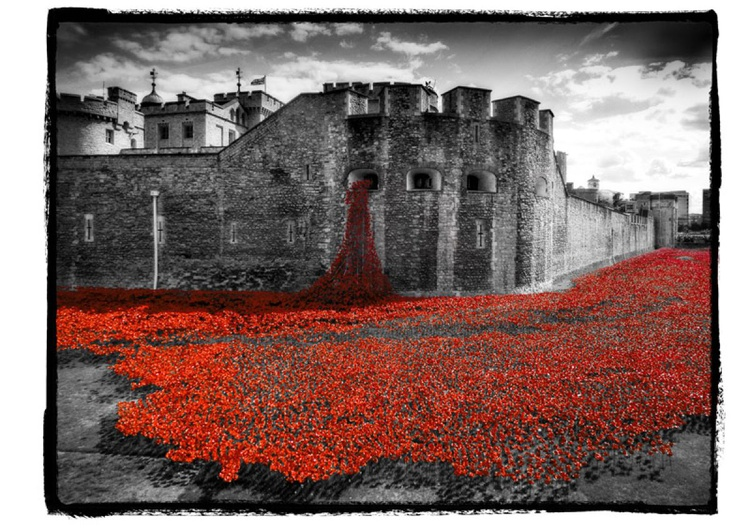 The Red Moat - Poppies At The Tower Of London - Image 0