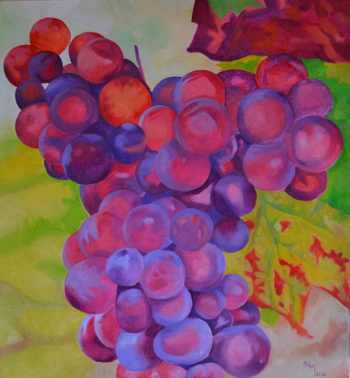 PASSION FOR GRAPES - Image 0