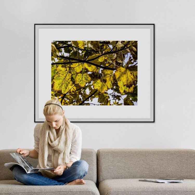 """Autumn begins in London No:2 (LIMITED EDITION 1/10) 40"""" X 30"""" - Image 0"""