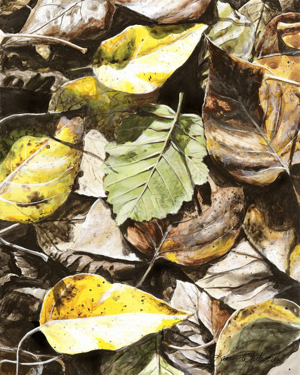 Golden Autumn - Talkeetna Leaves - Image 0