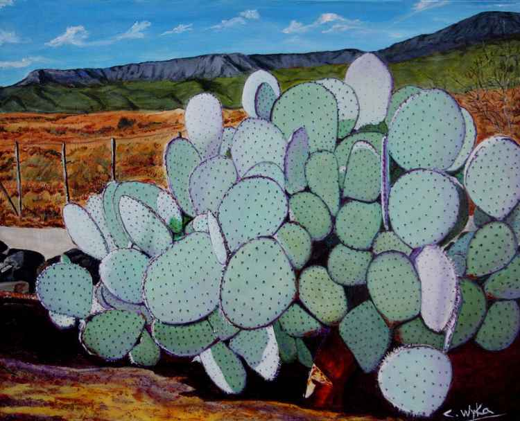 Chuckwalla Cactus (medium 20 x 16 inch)