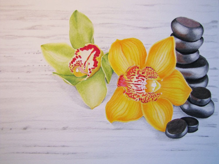 Orchids and stones 1 - Image 0