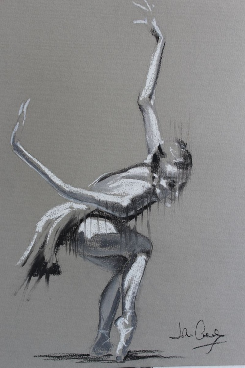 Swan - Image 0
