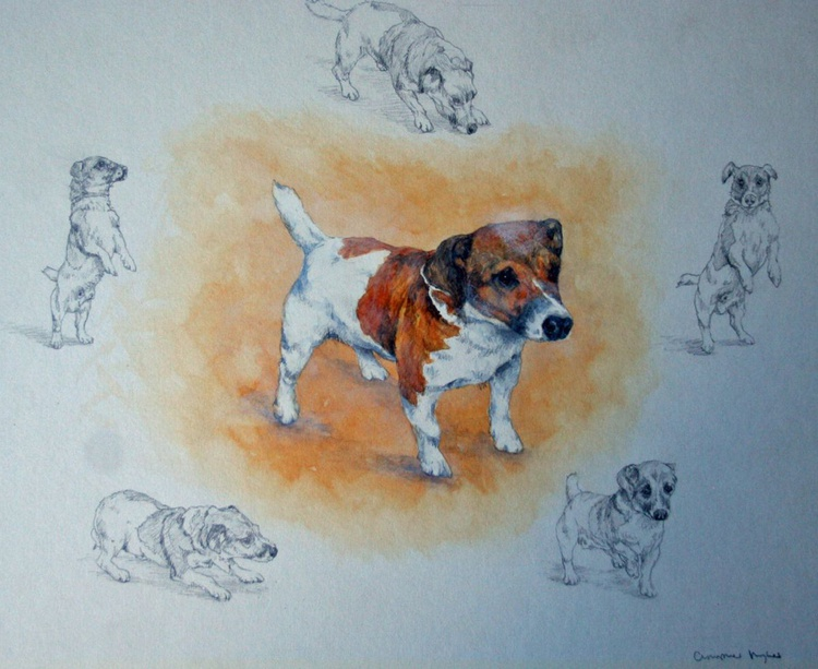 The Little Terrier - Image 0