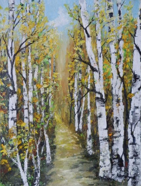 Path through birches forest - Image 0
