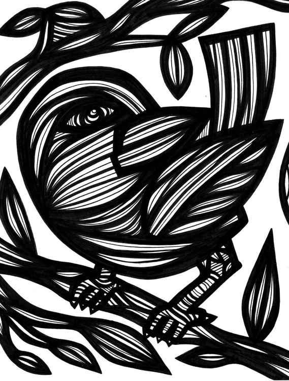 Bird Wildlife Original Drawing