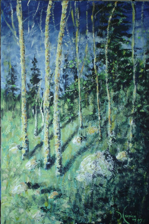Birches 001 - Image 0