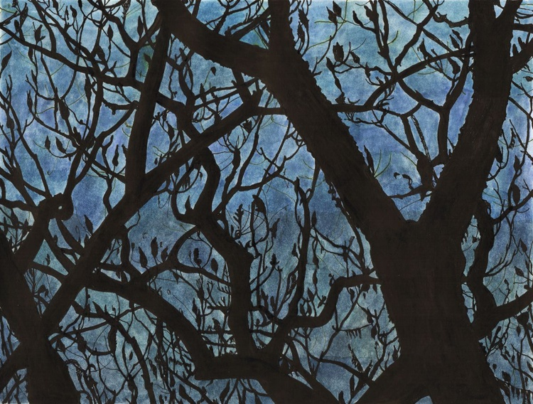 BETWEEN BRANCHES - Image 0