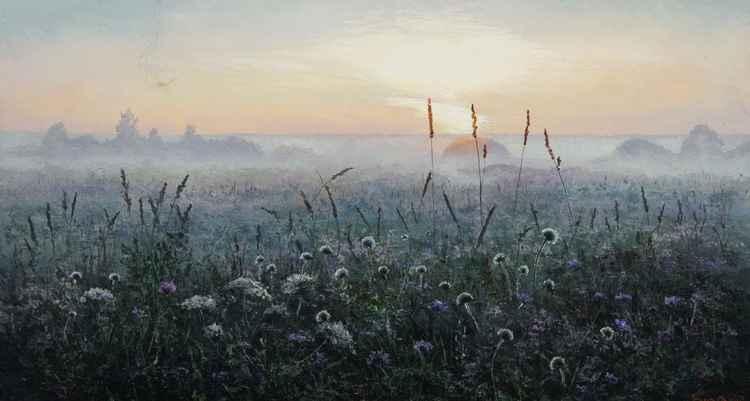 Morning field -