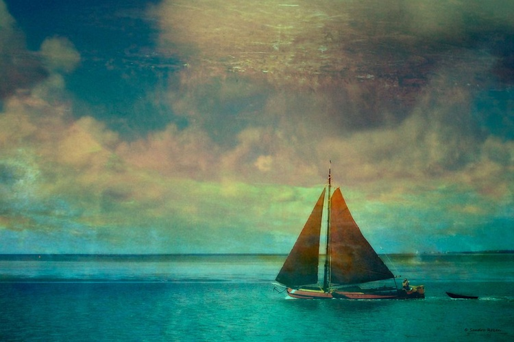 Free ...  - Canvas 75 x 50 cm - Image 0