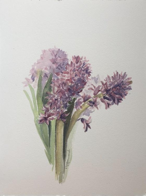 Pink hyacinth - Image 0