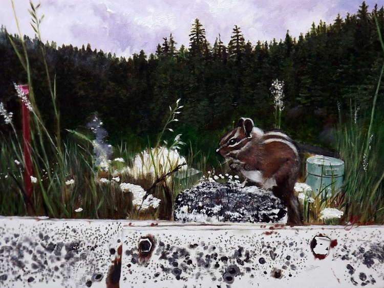 Squirrel at Timothy Lake Dam - Image 0