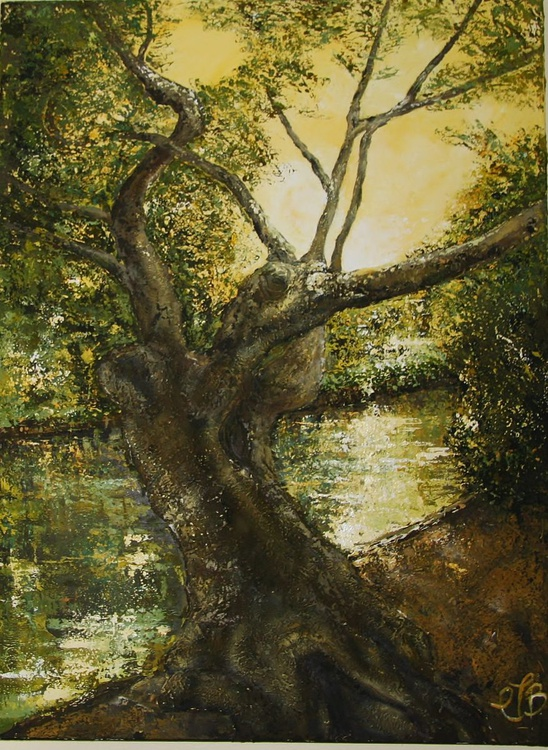 The old tree by the river - Image 0