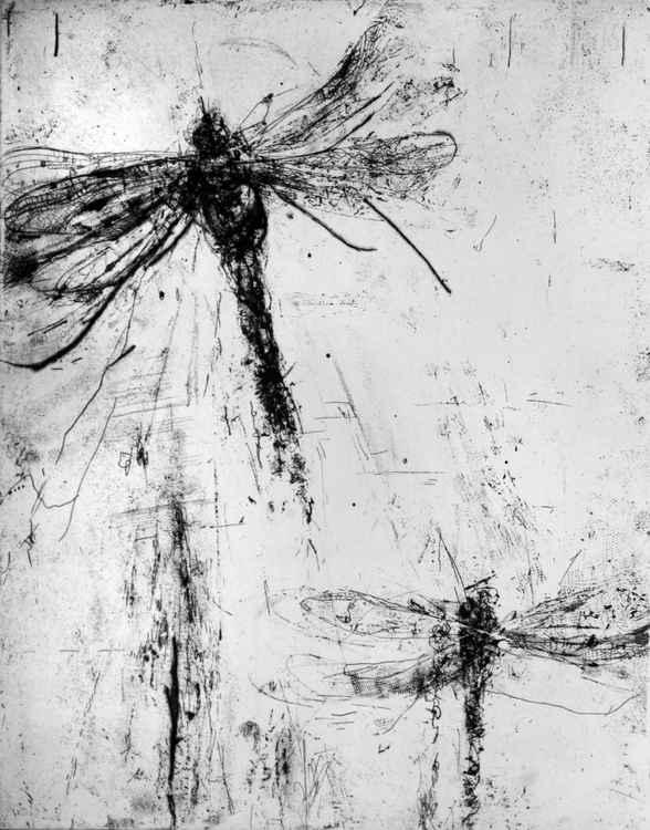 dragonfly 2B -
