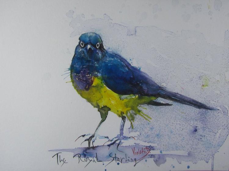 The Royal Starling - Image 0