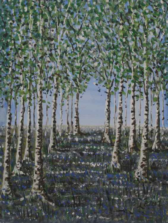Silver Birch and Bluebells II