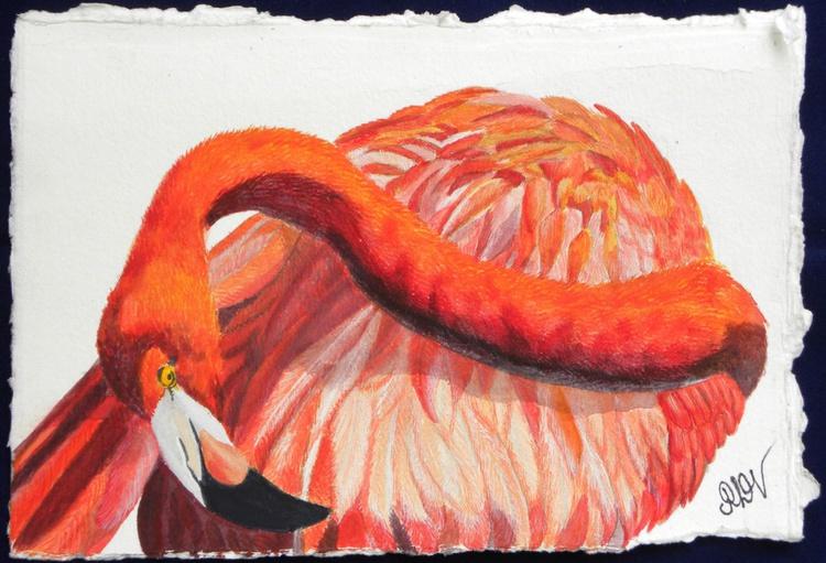 Flamingo Folly 3 - Image 0