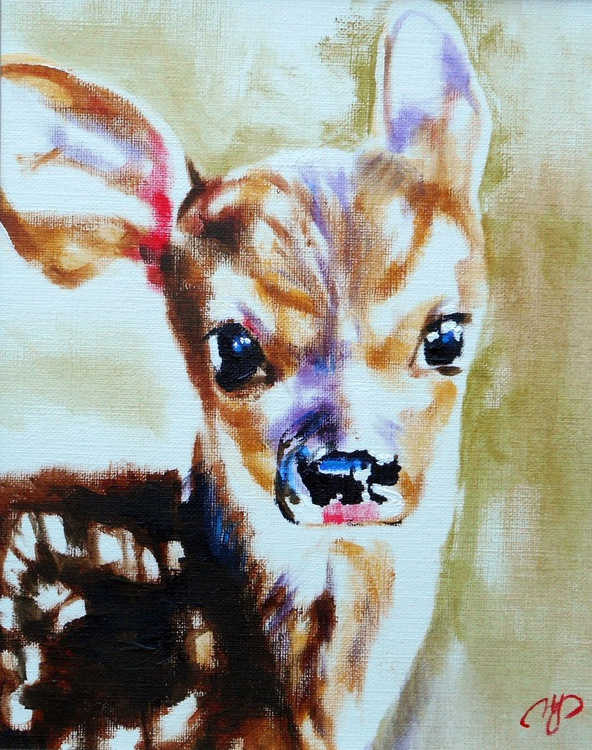 A Fawn - Image 0
