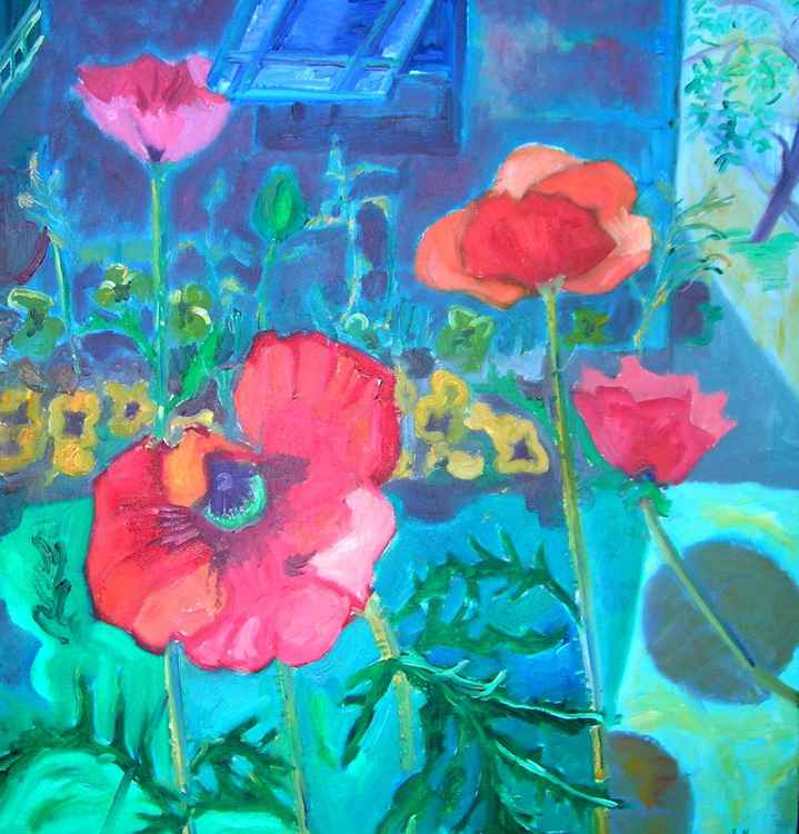 poppies by the studio -