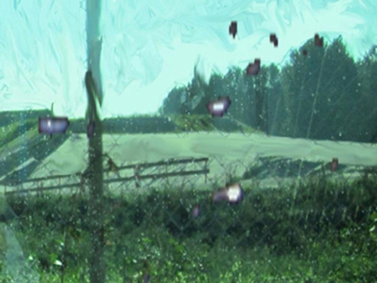 Natureswho - Image 0