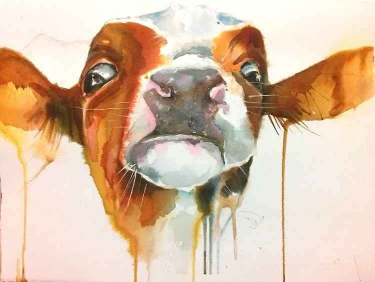 Watercolour Cow