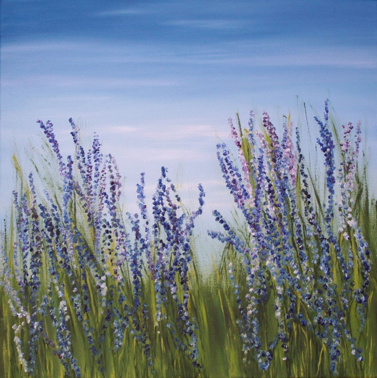 At the Lavender Fields - Image 0