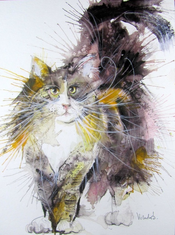 The Norwegian Forest Cat  - Image 0