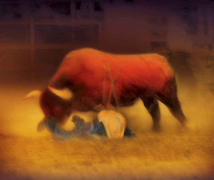 Cowboy Down -