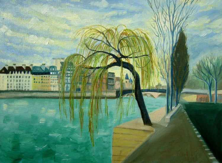 Willow Tree in Paris