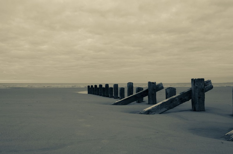 Groynes in the Sand - Image 0