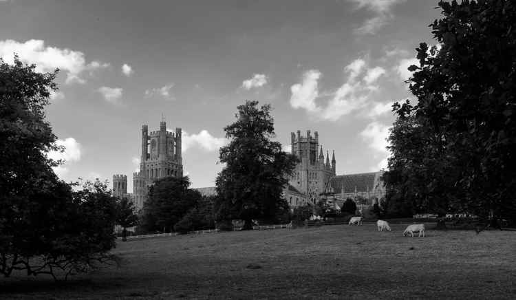 Ely Cathedral Pastoral -