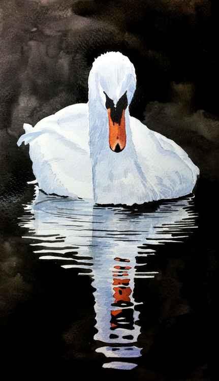 White Swan -