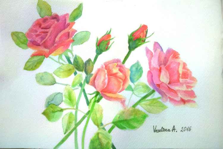 Watercolour roses painting