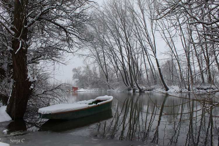 Winter on the river - Image 0
