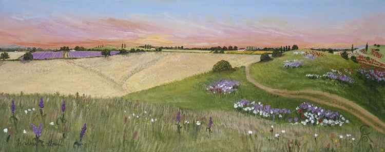 Margencel Wild Flower Meadow -