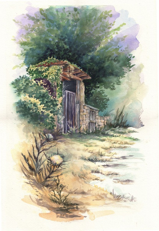 The old gate - Image 0