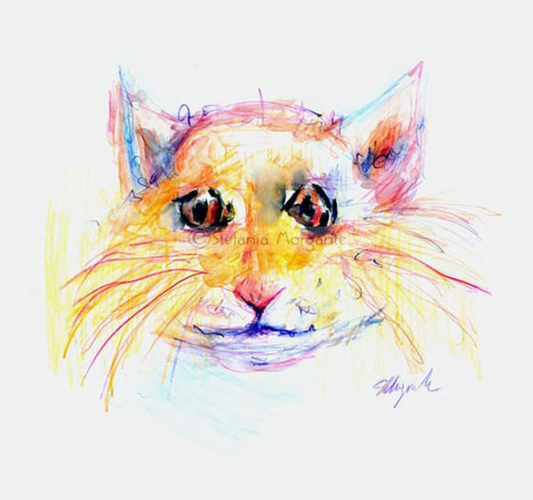 Stray cat - Image 0