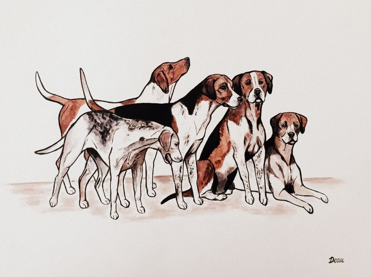 Group of Foxhounds - Image 0