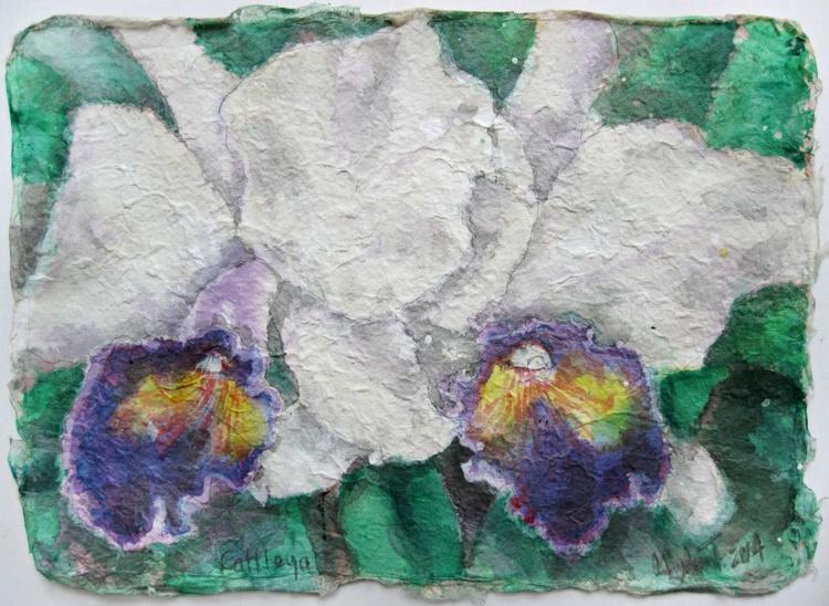 Cattleya - Image 0