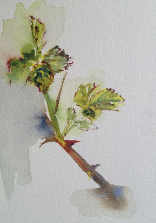 Spring Bramble - Image 0