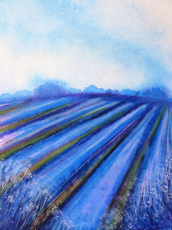 Blue Fields - Image 0