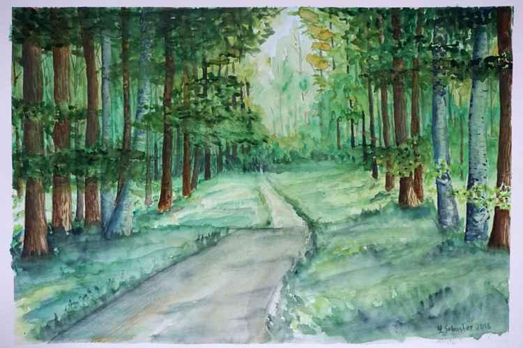 Woodland . 2