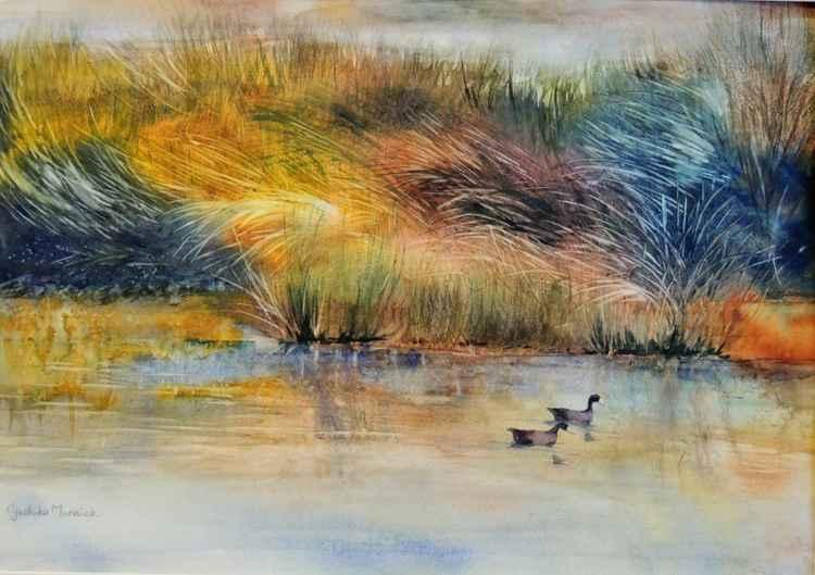 Autumn Marsh -