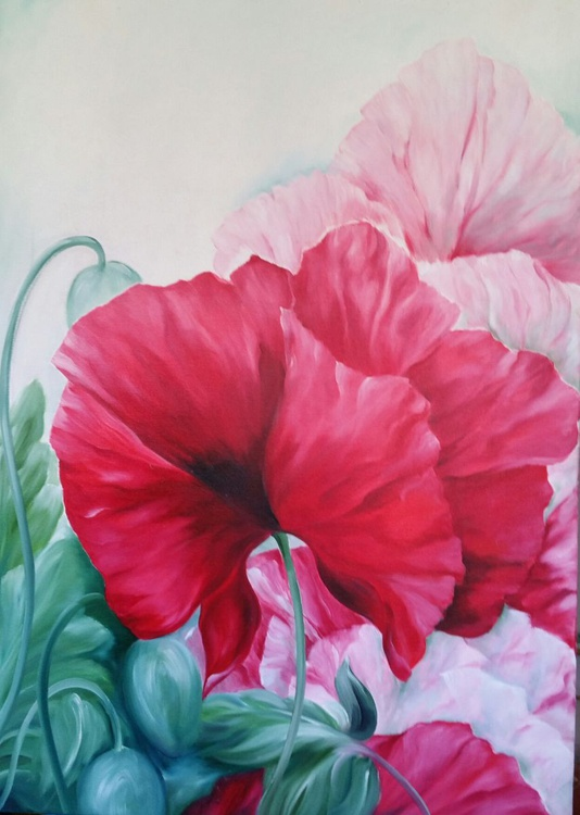 """Poppies"" - Image 0"
