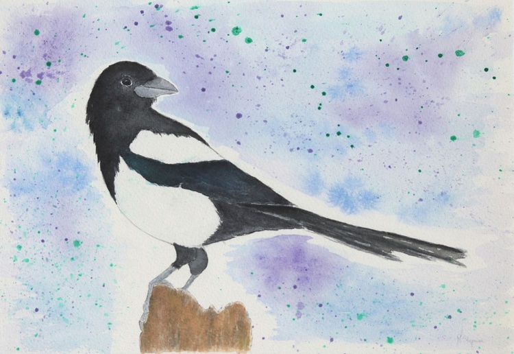 The Eurasian magpie - Image 0