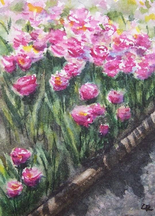 Tulip Path - Image 0