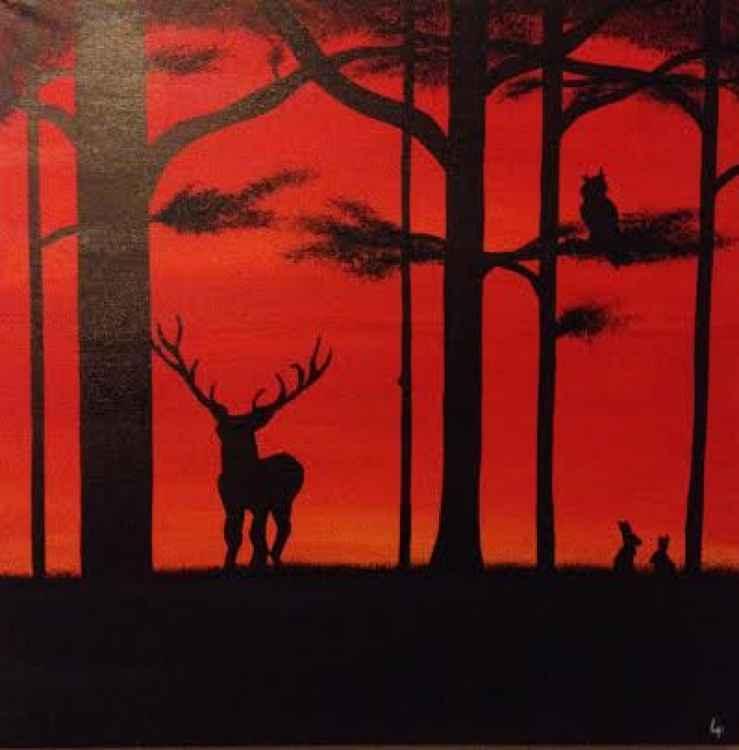 Sunset wildlife -