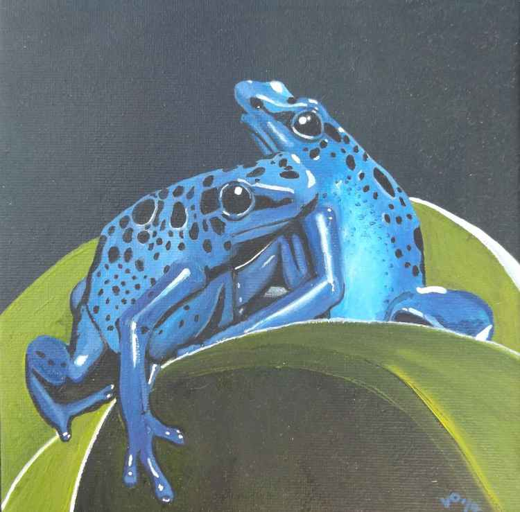 Blue Frogs. -