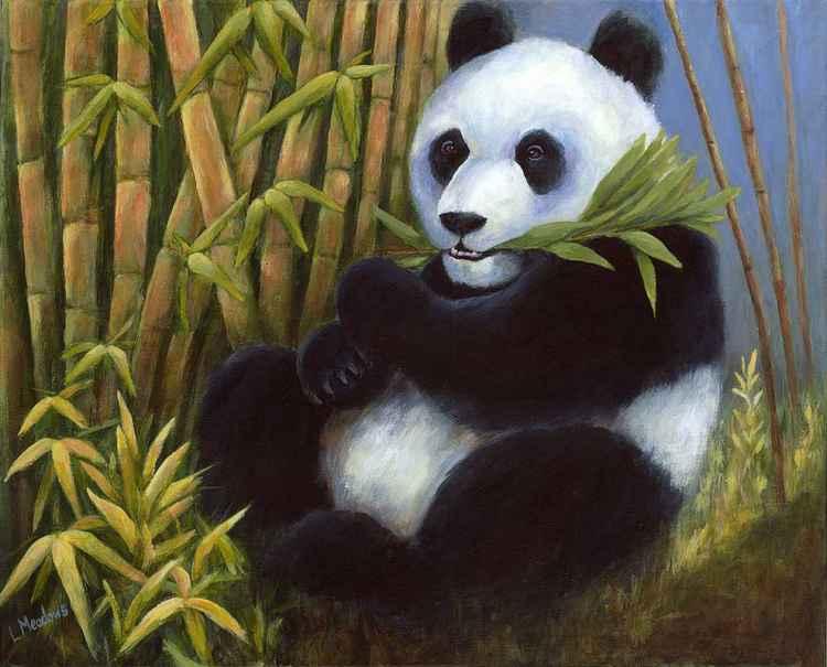 Panda -
