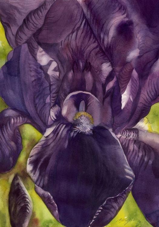 Deep into purple - Image 0